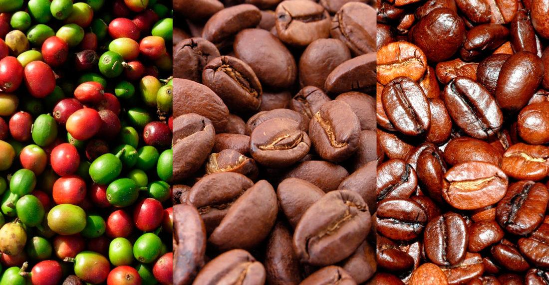 Venezuela ha exportado solo 10,6% de café de las cifras aportadas por el MAT
